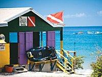 caribbeandream.jpg