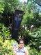 Tracey Drennen-Alexander, A cenote in the Yucatan, Mexico