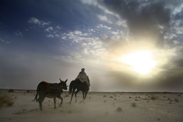 desert_03.jpg