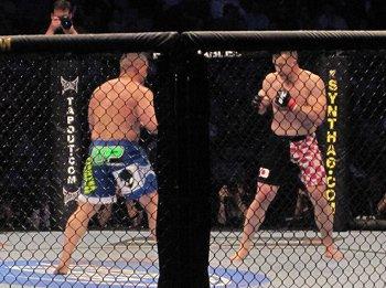 cage-fighting.jpg