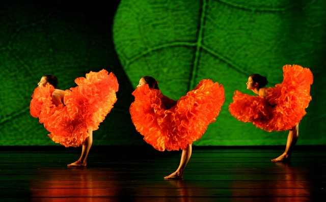 DANCE-ST.-LOUIS,-MOMIX-in-Botanica-(red-feathers),-photo-by-Max-Pucciariello.jpg