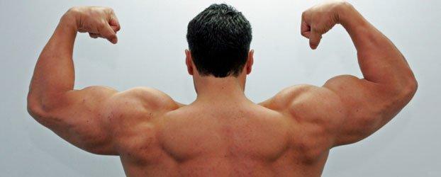 muscle-man.jpg