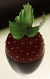 fraise_crop_reduce1.jpg