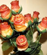 baconroses.png