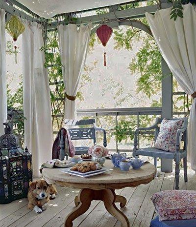 3-dog-and-drapes.jpg