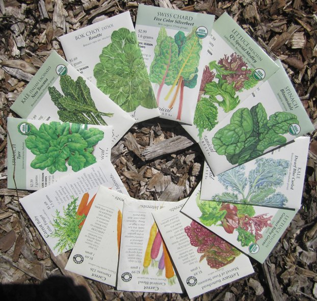 seed circle.jpg