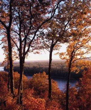 fall-travel.jpg