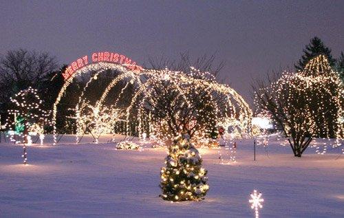 Christmas Tree That Snows