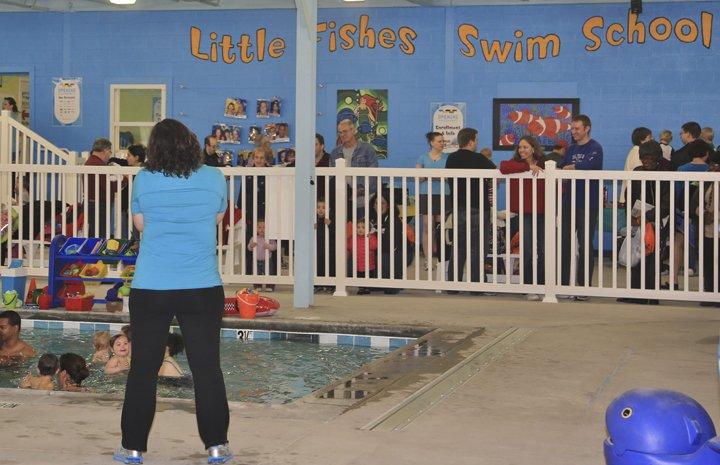 Little fishes swim school opening ceremony december 29 for Little fish swim school