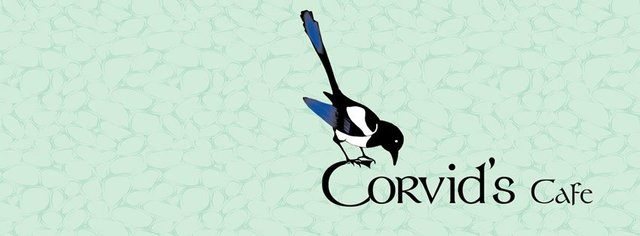 corvids.jpg