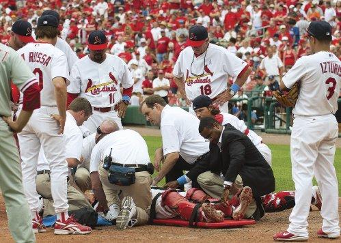 Dr. cardinals.jpg