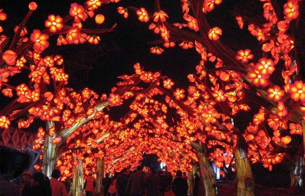Chinese lanterns return to the missouri botanical garden Missouri botanical garden lantern festival