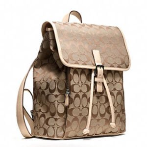 Accessory Trend  Backpacks 8f42be73b3c81