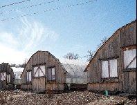 hoophouses.jpg