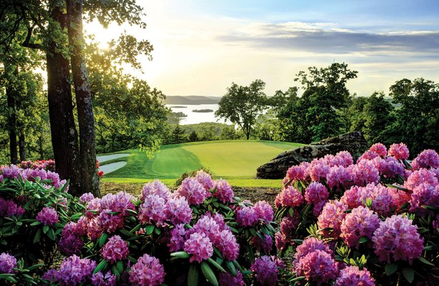 TOTR-Rhododendrum-at-Sunset-(3).jpg