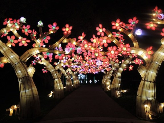 The lantern festival returns to the missouri botanical Missouri botanical garden lantern festival