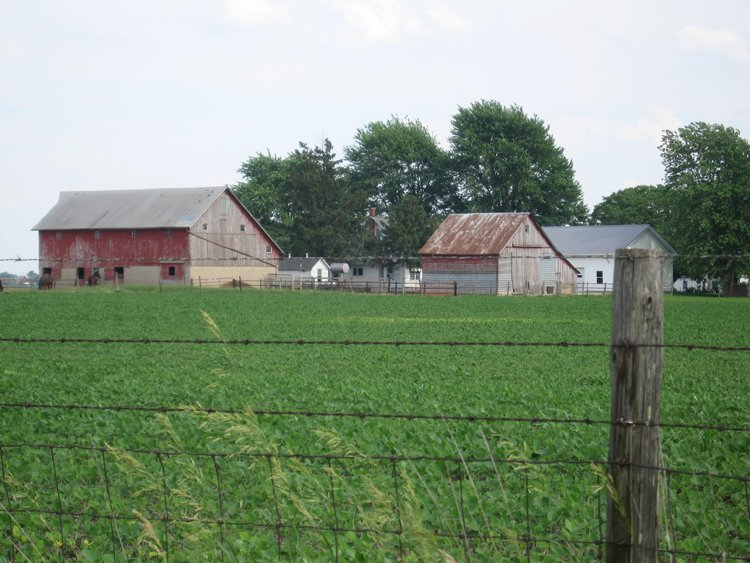 A Road Trip to Amish Country: Arthur, Illinois