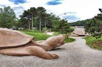 turtleplayground.jpg