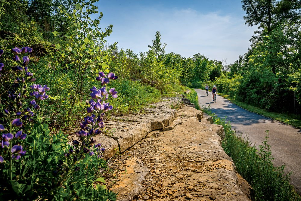 Top 5 Family-Friendly Hiking and Biking Trails