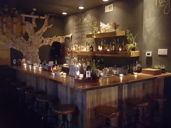 int back bar and tree on back wall.jpg
