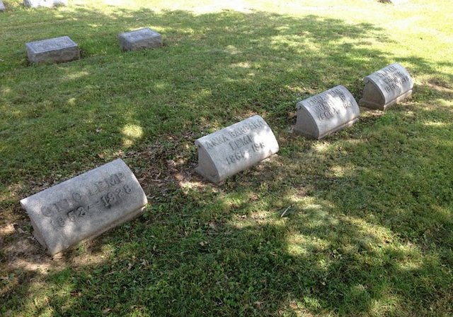 Otto Lemp Family Plot in New St. Marcus Cemetery.jpg