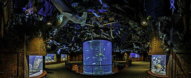 Shipwreck Room.jpg