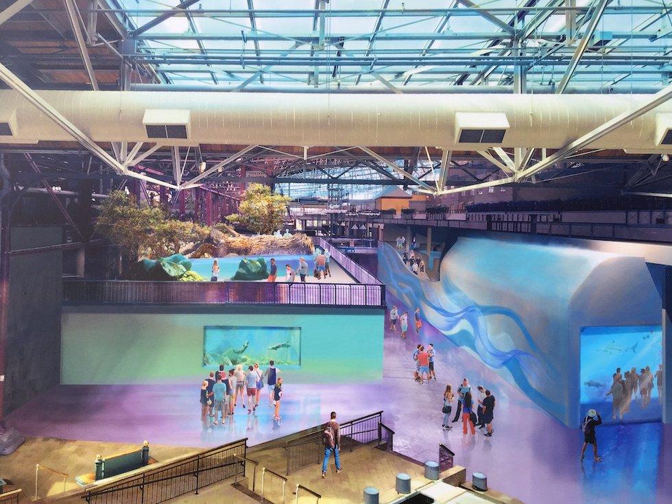St louis aquarium at union station construction to begin for Construction aquarium