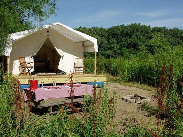Safari Camp II