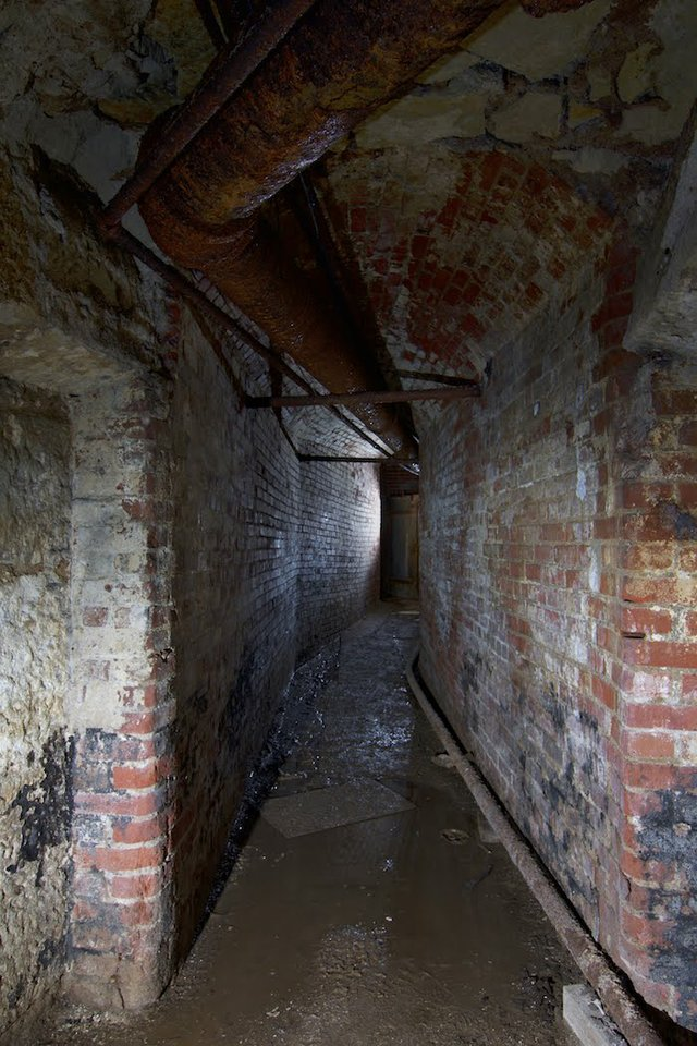 Tunnel in the Cellars, Photograph by Jason Gray.jpg