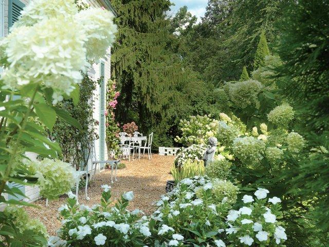overall garden.jpg
