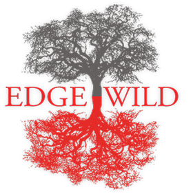 ew-logo-basic-u24142_1.png