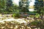francis park by jeff wunrow city.jpg