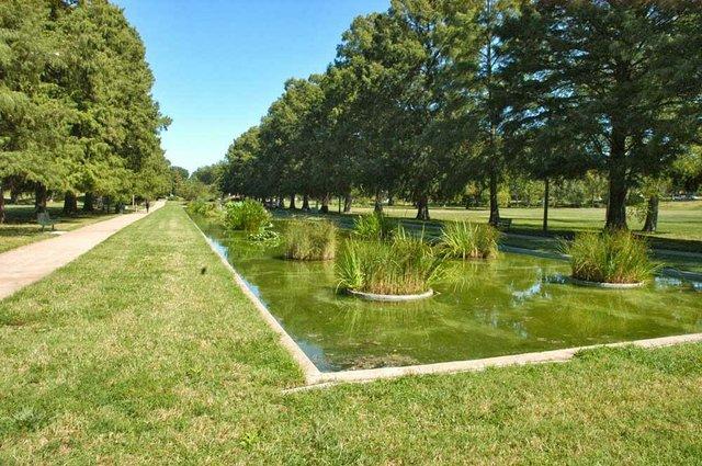 francis park by mark groth.jpg