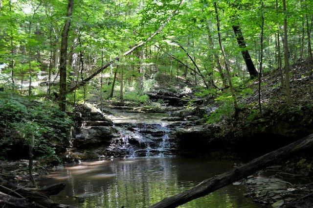 Olin Nature Preserve- Beaver Falls Creek.JPG