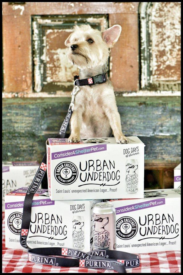 Purina & Urban Underdog1.jpeg