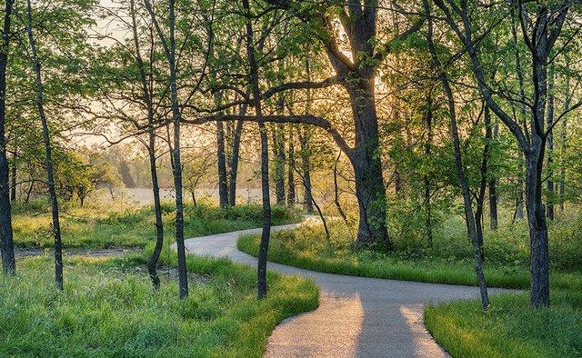 enlarge_Spring-Path_6057.jpg