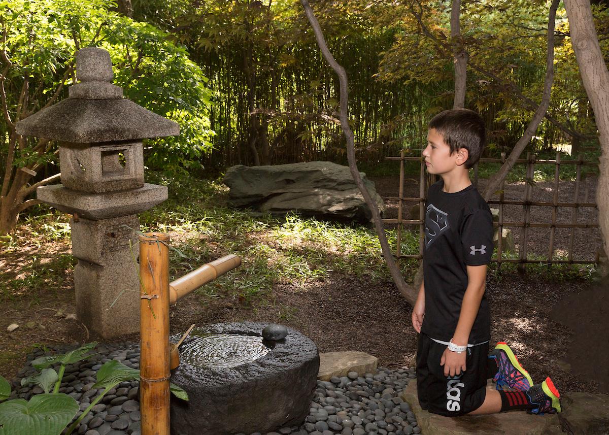 The Japanese Festival returns to the Missouri Botanical Garden