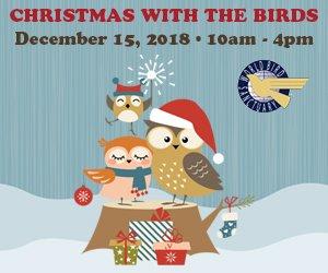 christmasbirds_medbox.jpg