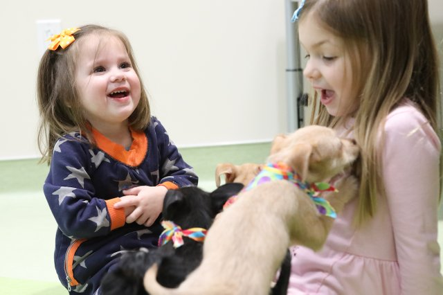 St. Louis Children's Hospital Purina Family Pet Center - National Puppy Day (7).jpg