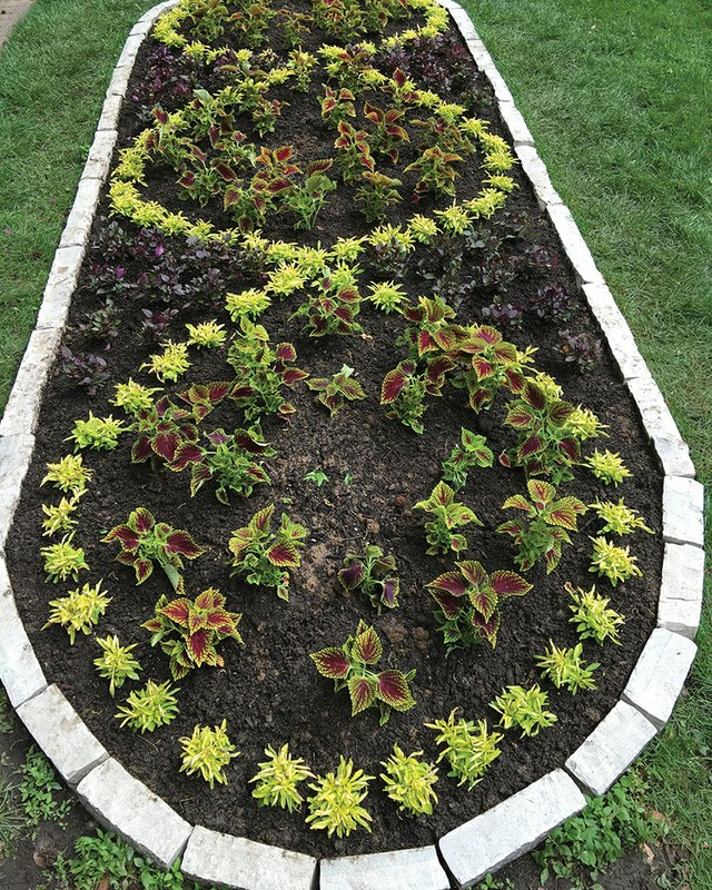 The Key To The Perfect Knot Garden A Striking Landscape Design