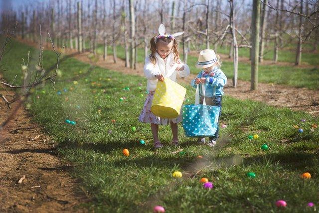 Easter-Egg-Citement.jpg