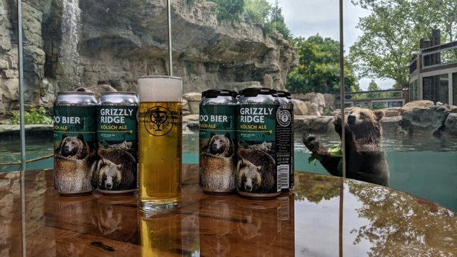 Grizzly Ridge Kolsch and grizzly bear_credit Urban Chestnut Brewing Company.jpg