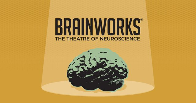 Brainworks Email Graphic_01.png