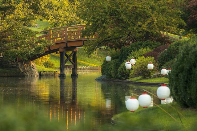 2017 September, Japanese Festival, Japanese Garden, Drum Bridge, Lanterns, Kent Burgess_.jpg