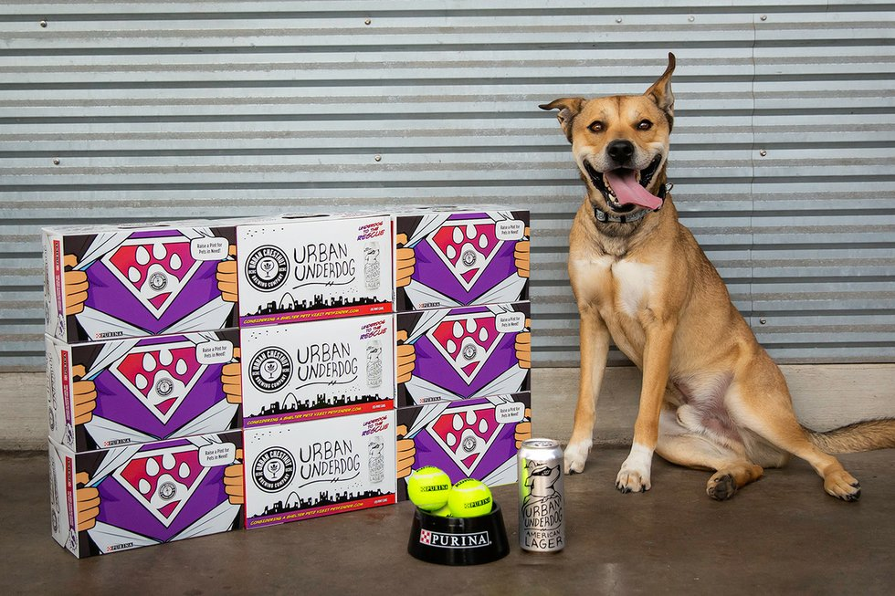 Sales of Urban Chestnut's Urban Underdog to benefit local animal shelters