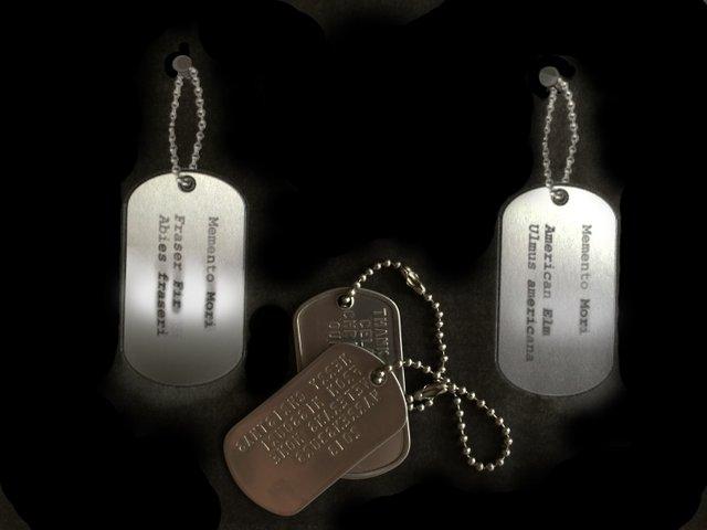 3 MK Medals Large.jpg