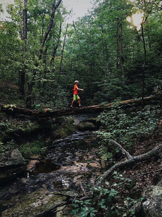 Rockwoods_Reservation.jpg
