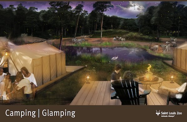 Rendering_Camping Glamping 2_Saint  Louis Zoo.jpg