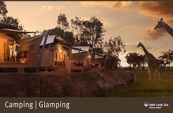 Rendering_Camping Glamping_Saint Louis Zoo.jpg