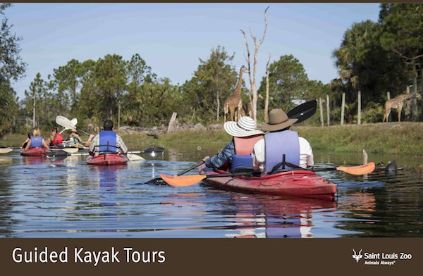 Rendering_Guided Kayak Tours_Saint Louis Zoo.jpg